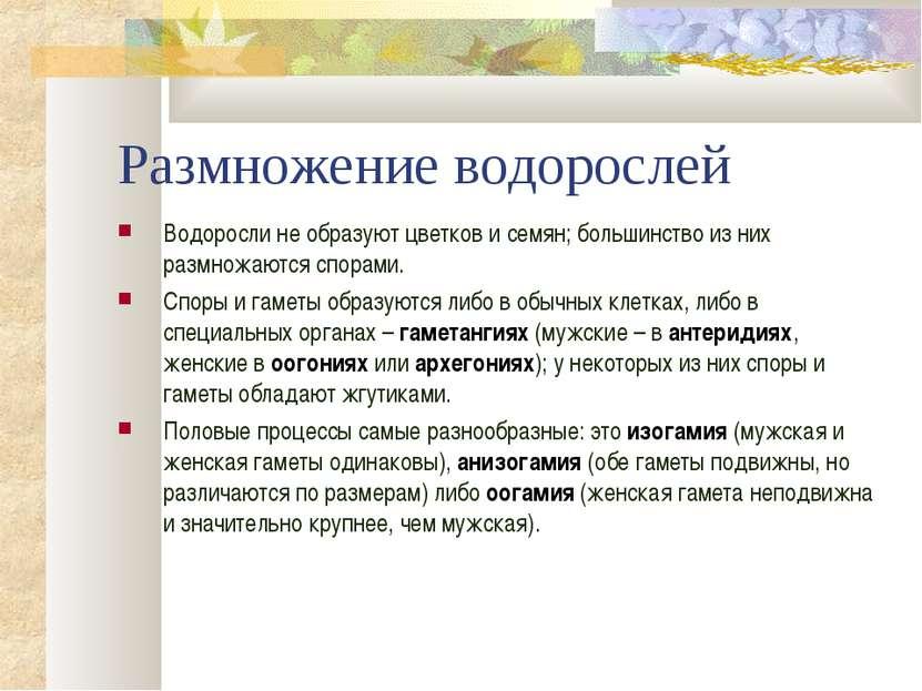Размножение водорослей Водоросли не образуют цветков и семян; большинство из ...