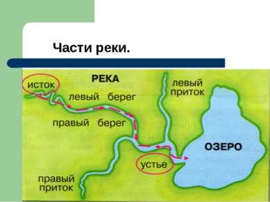 Части реки.
