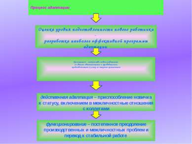 Процесс адаптации Оценка уровня подготовленности нового работника - разработк...