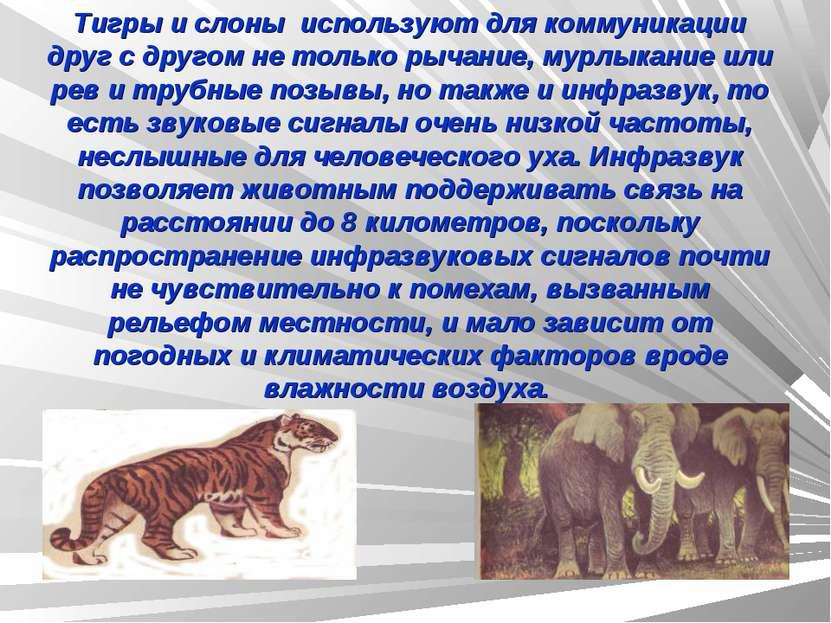 Тигры и слоны используют для коммуникации друг с другом не только рычание, му...