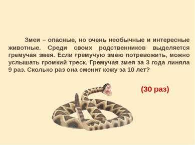 Змеи – опасные, но очень необычные и интересные животные. Среди своих родстве...