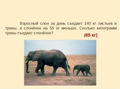 Взрослый слон за день съедает 140 кг листьев и травы, а слонёнок на 55 кг мен...