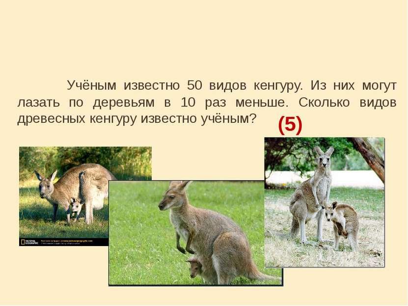 Учёным известно 50 видов кенгуру. Из них могут лазать по деревьям в 10 раз ме...