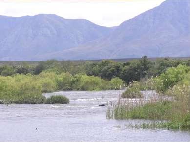 Реки Африки - Бриде