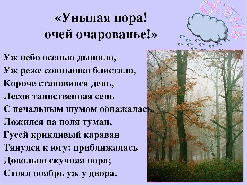 «Унылая пора! очей очарованье!» Уж небо осенью дышало, Уж реже солнышко блист...