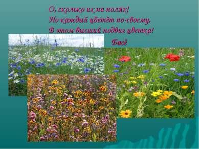 О, сколько их на полях! Но каждый цветёт по-своему, В этом высший подвиг цвет...