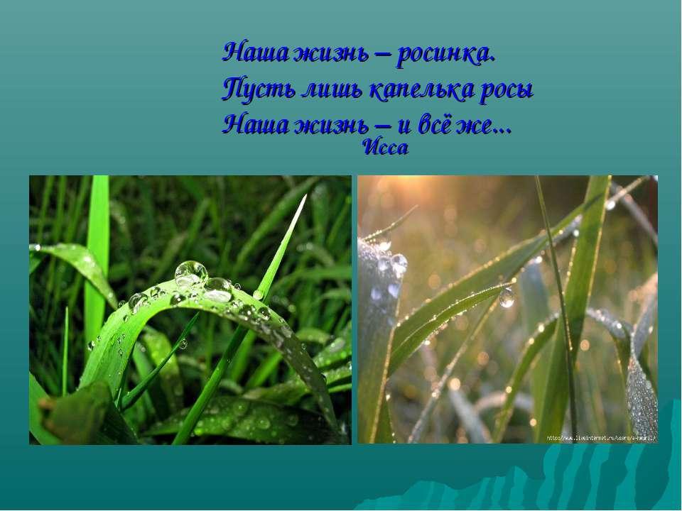 Наша жизнь – росинка. Пусть лишь капелька росы Наша жизнь – и всё же... Исса