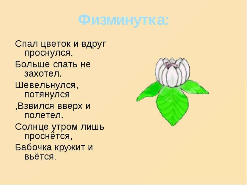 Физминутка: Спал цветок и вдруг проснулся. Больше спать не захотел. Шевельнул...