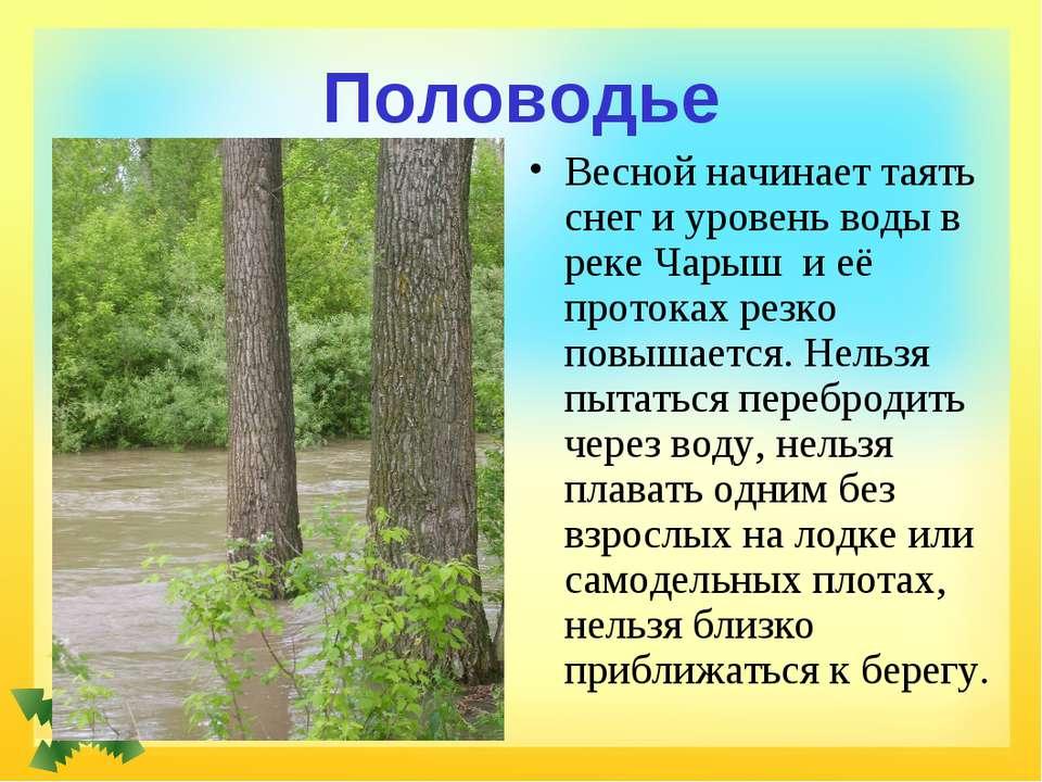 Половодье Весной начинает таять снег и уровень воды в реке Чарыш и её протока...