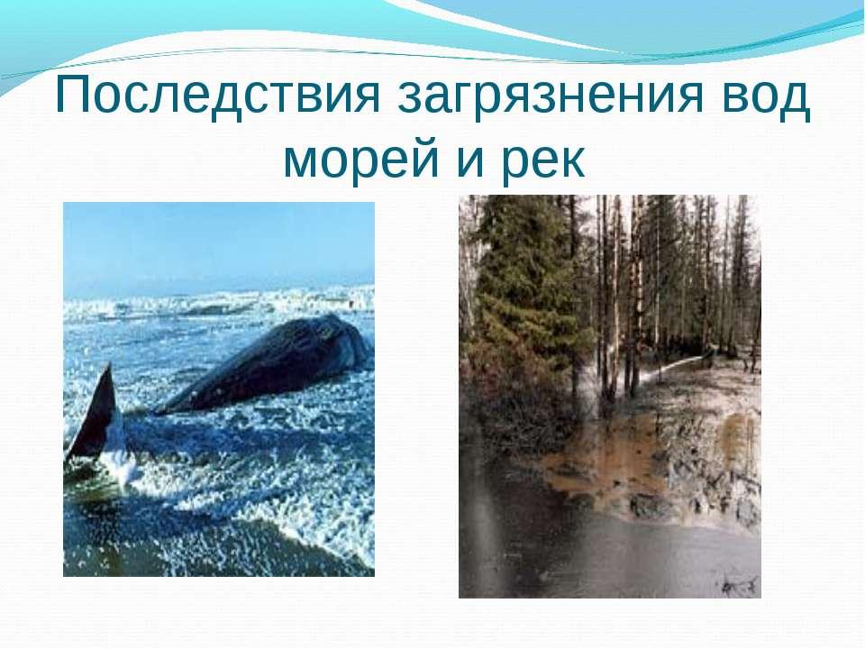 Последствия загрязнения вод морей и рек