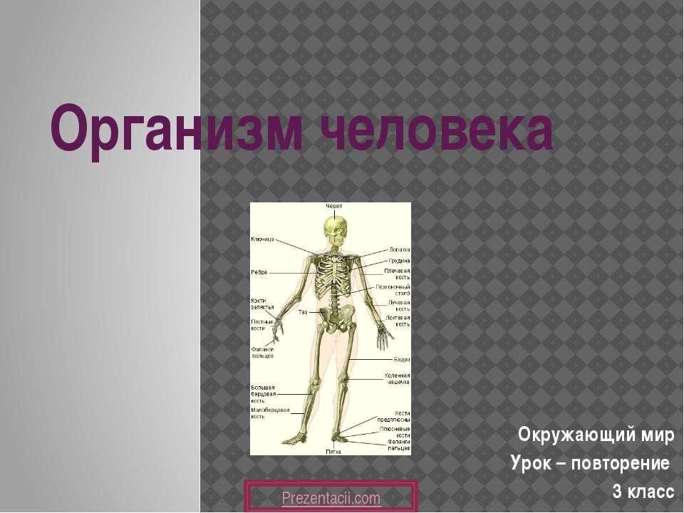 Организм человека Окружающий мир Урок – повторение 3 класс