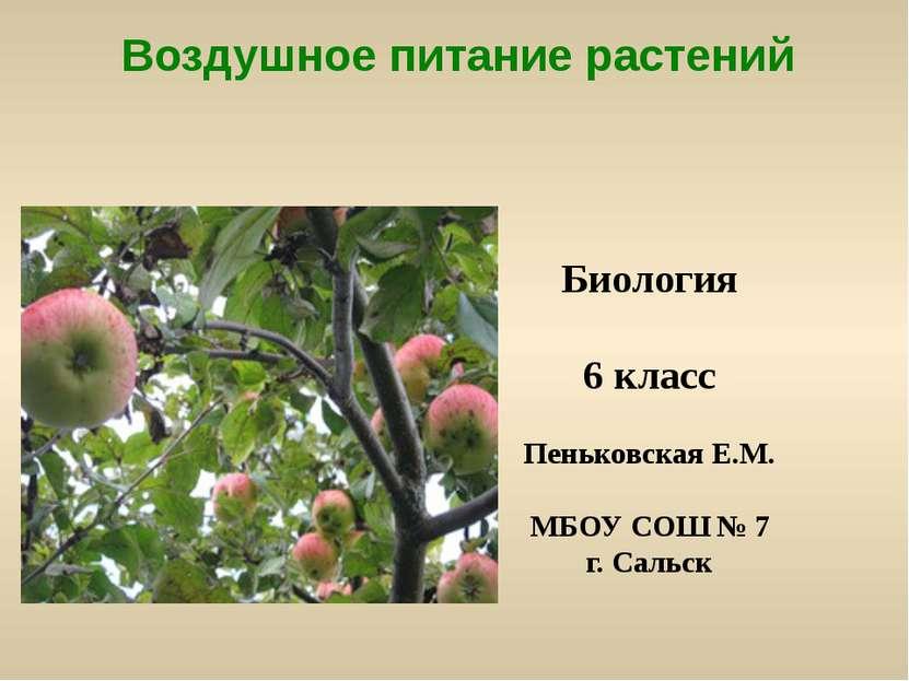 Воздушное питание растений Биология 6 класс Пеньковская Е.М. МБОУ СОШ № 7 г. ...