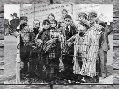 Нацистские евгенические программы Программа эвтаназии Т-4 Уничтожение гомосек...