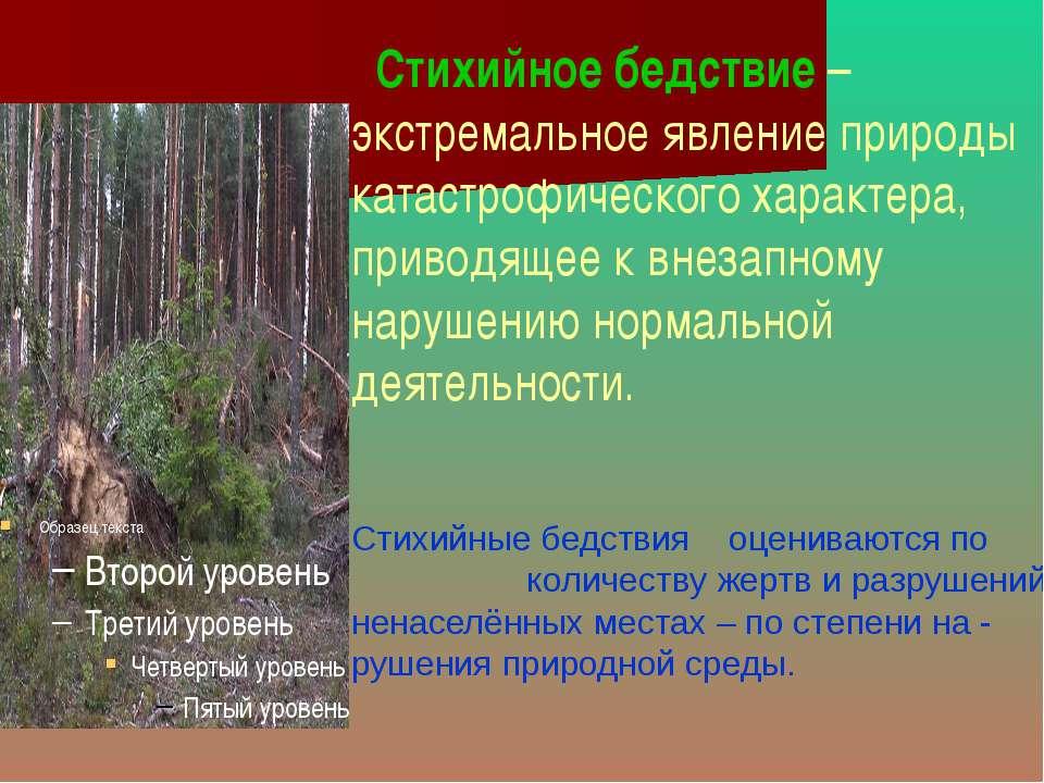 Стихийное бедствие – экстремальное явление природы катастрофического характер...
