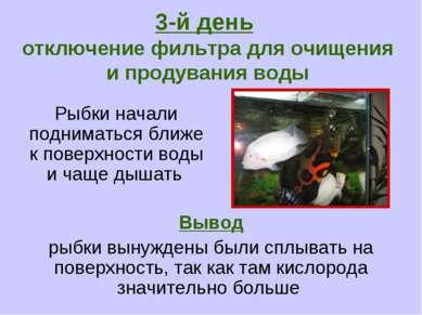 Рыбки начали подниматься ближе к поверхности воды и чаще дышать 3-й день откл...