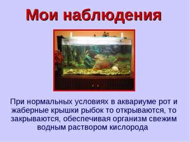 Мои наблюдения При нормальных условиях в аквариуме рот и жаберные крышки рыбо...
