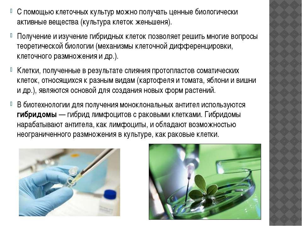 С помощью клеточных культур можно получать ценные биологически активные вещес...