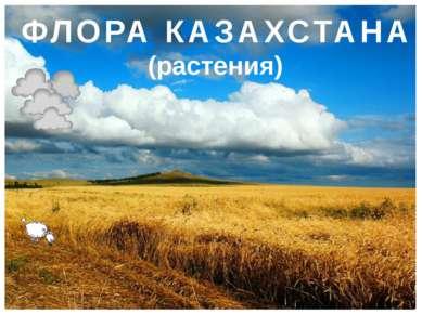 ФЛОРА КАЗАХСТАНА (растения)