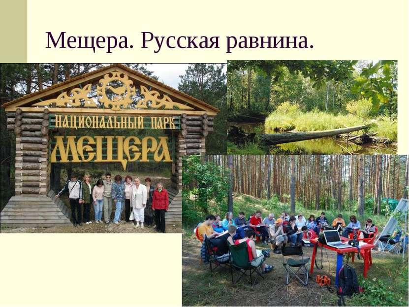 Мещера. Русская равнина.
