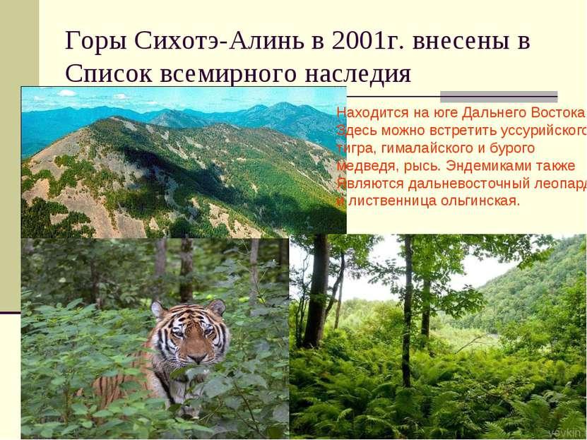 Горы Сихотэ-Алинь в 2001г. внесены в Список всемирного наследия Находится на ...