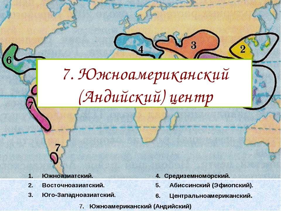 Южноазиатский. Восточноазиатский. Юго-Западноазиатский. 4. Средиземноморский....