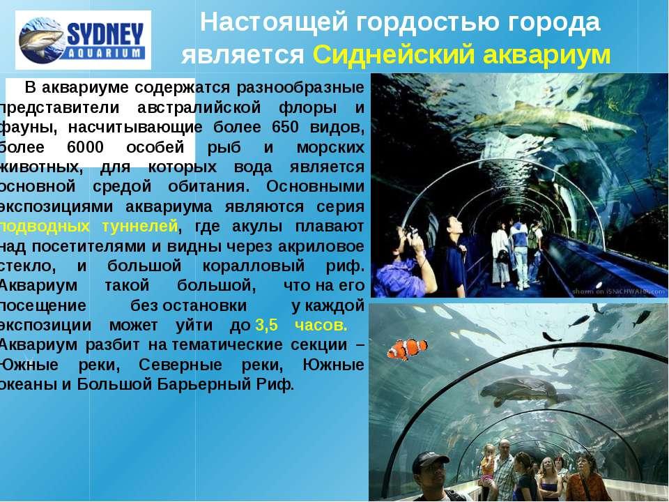 Настоящей гордостью города является Сиднейский аквариум В аквариуме содержатс...