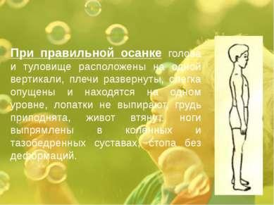 При правильной осанке голова и туловище расположены на одной вертикали, плечи...