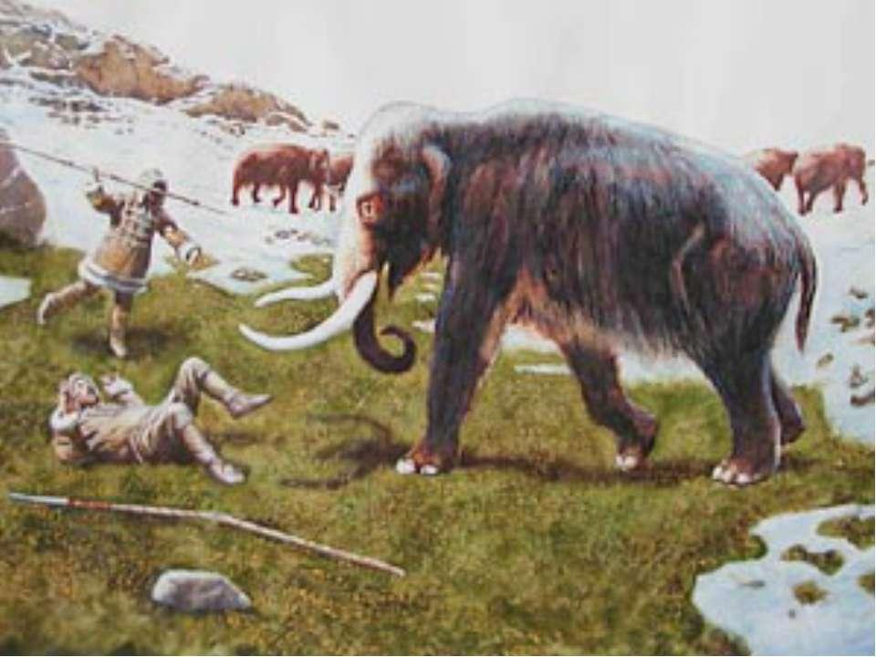 Вообразим себе африканские степи два миллиона лет назад. Львица напала на ант...