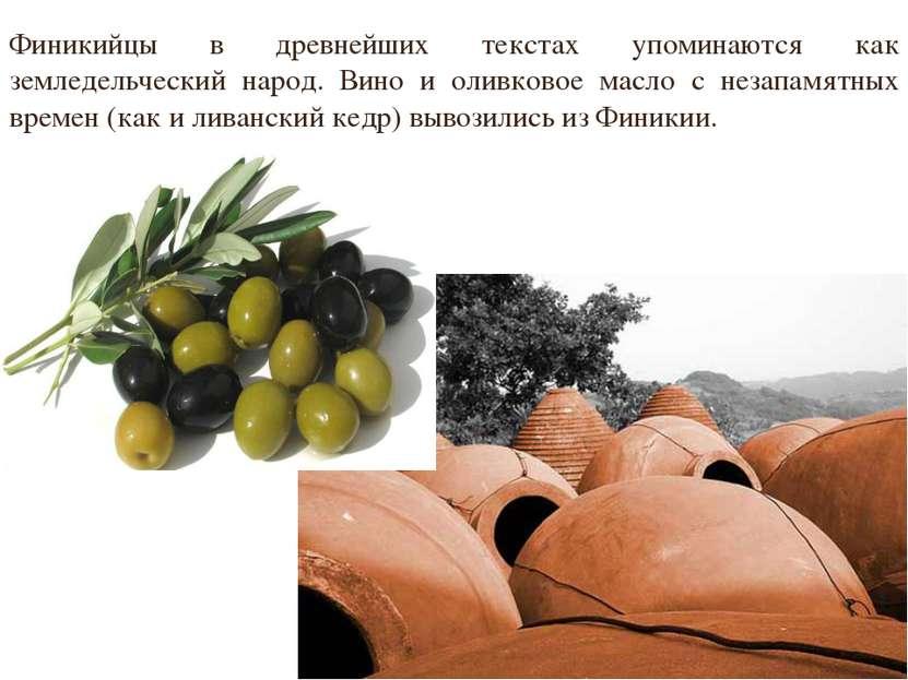 Финикийцы в древнейших текстах упоминаются как земледельческий народ. Вино и ...