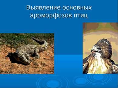 Выявление основных ароморфозов птиц