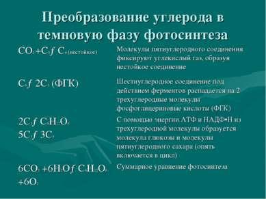 Преобразование углерода в темновую фазу фотосинтеза СО2 +С5→С6 (нестойкое) Мо...