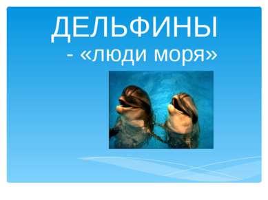 ДЕЛЬФИНЫ - «люди моря»