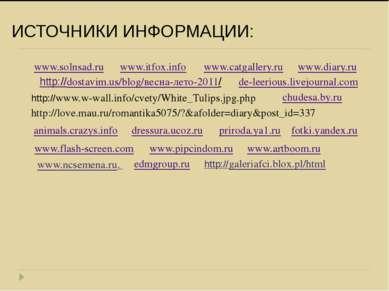ИСТОЧНИКИ ИНФОРМАЦИИ: www.flash-screen.com www.itfox.info www.catgallery.ru w...