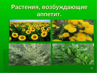 * Растения, возбуждающие аппетит.