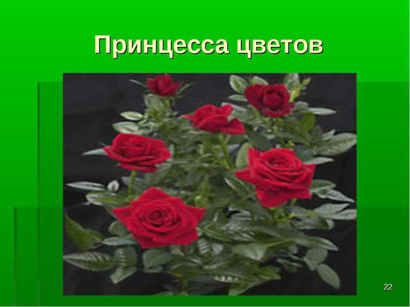 * Принцесса цветов