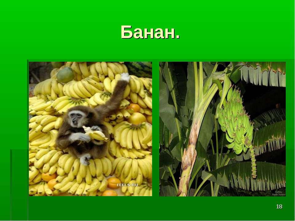 * Банан.
