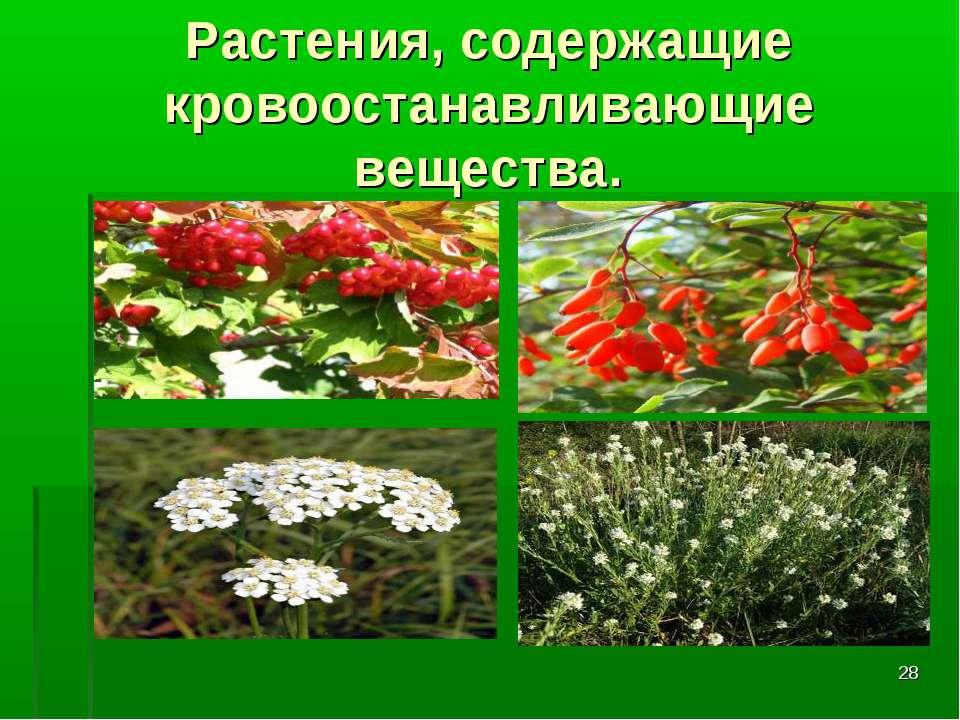 * Растения, содержащие кровоостанавливающие вещества.