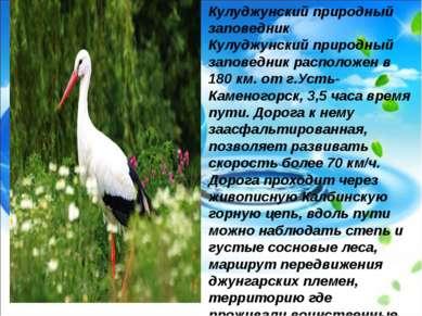 Кулуджунский природный заповедник Кулуджунский природный заповедник расположе...