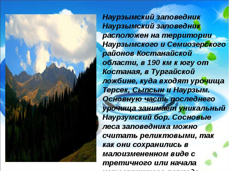 Наурзымский заповедник Наурзымский заповедник расположен на территории Наурзы...
