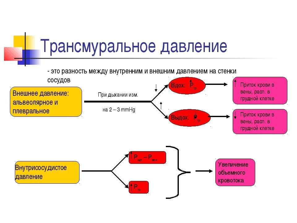 Трансмуральное давление - это разность между внутренним и внешним давлением н...
