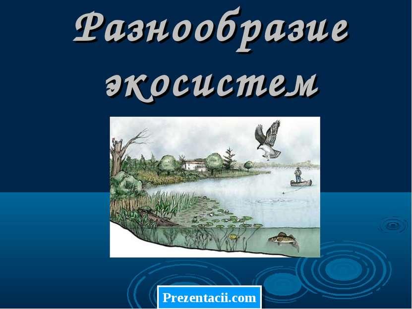 Разнообразие экосистем Prezentacii.com
