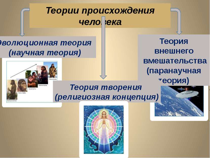 Теория внешнего вмешательства (паранаучная теория) Теории происхождения челов...