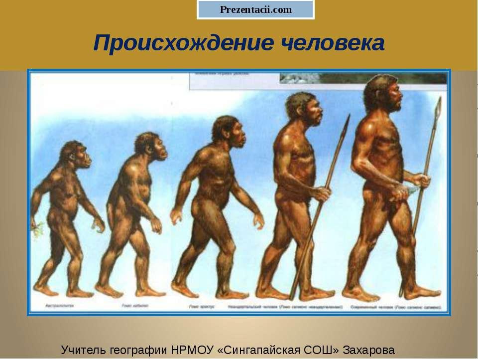 Происхождение человека Учитель географии НРМОУ «Сингапайская СОШ» Захарова Л.А.