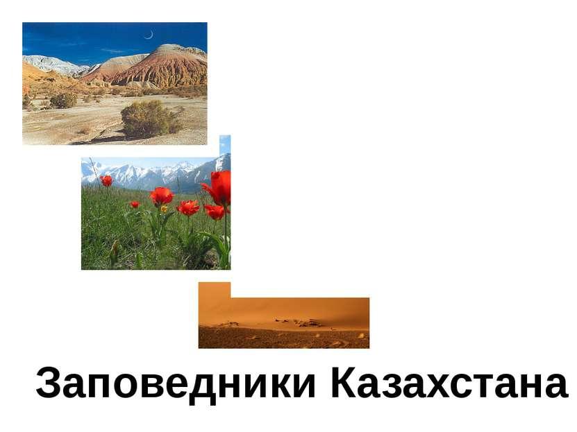 Заповедники Казахстана Автор: Попко Татьяна Викторовна