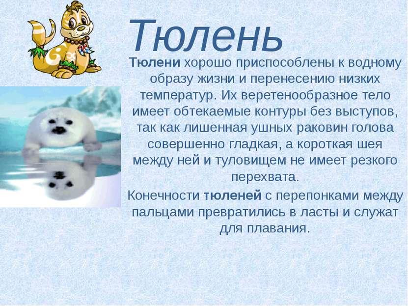 Тюлень Тюленихорошо приспособлены к водному образу жизни и перенесению низки...