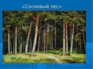 «Сосновый лес»
