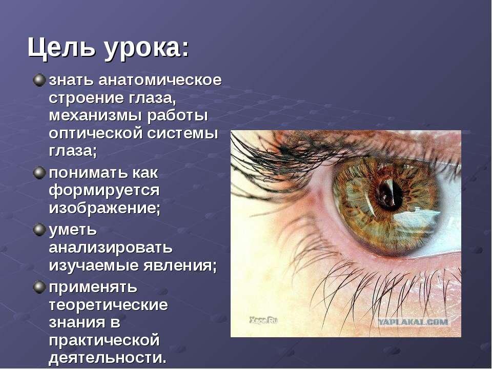 Цель урока: знать анатомическое строение глаза, механизмы работы оптической с...