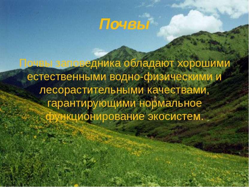 Почвы Почвы заповедника обладают хорошими естественными водно-физическими и л...