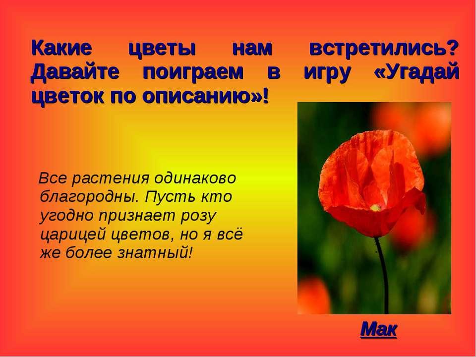Какие цветы нам встретились? Давайте поиграем в игру «Угадай цветок по описан...