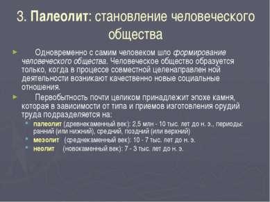 3. Палеолит: становление человеческого общества Одновременно с самим человеко...